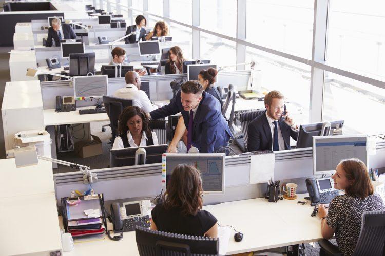 employee workplace satisfaction