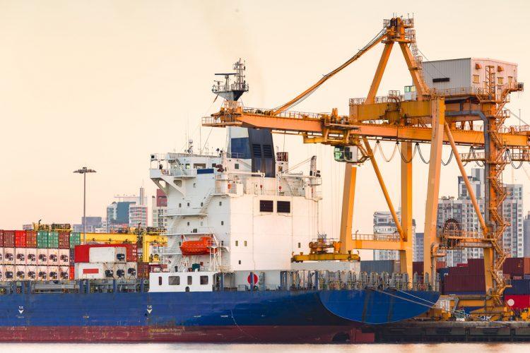 exporting opportunities