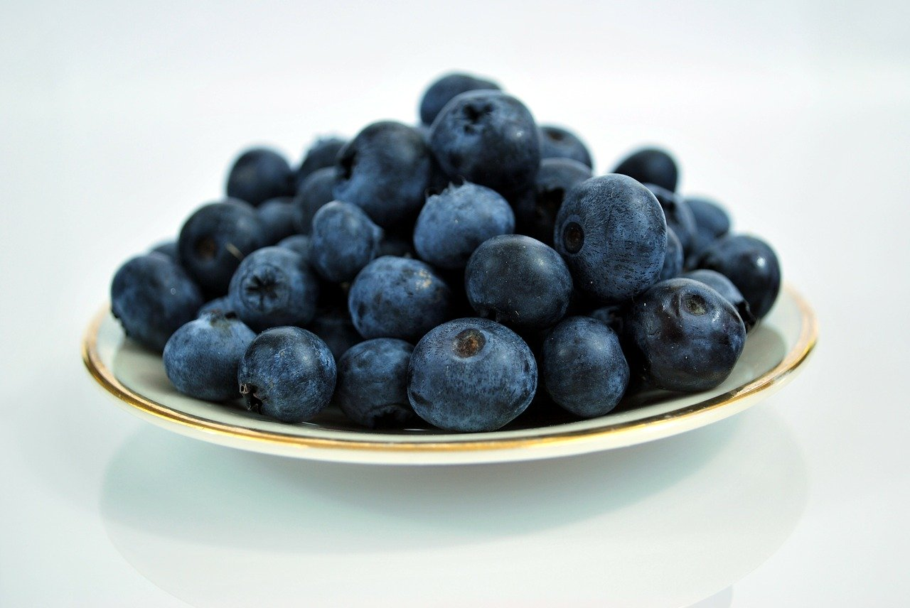 A small bowl of blueberries,  a sweet and healthy snack