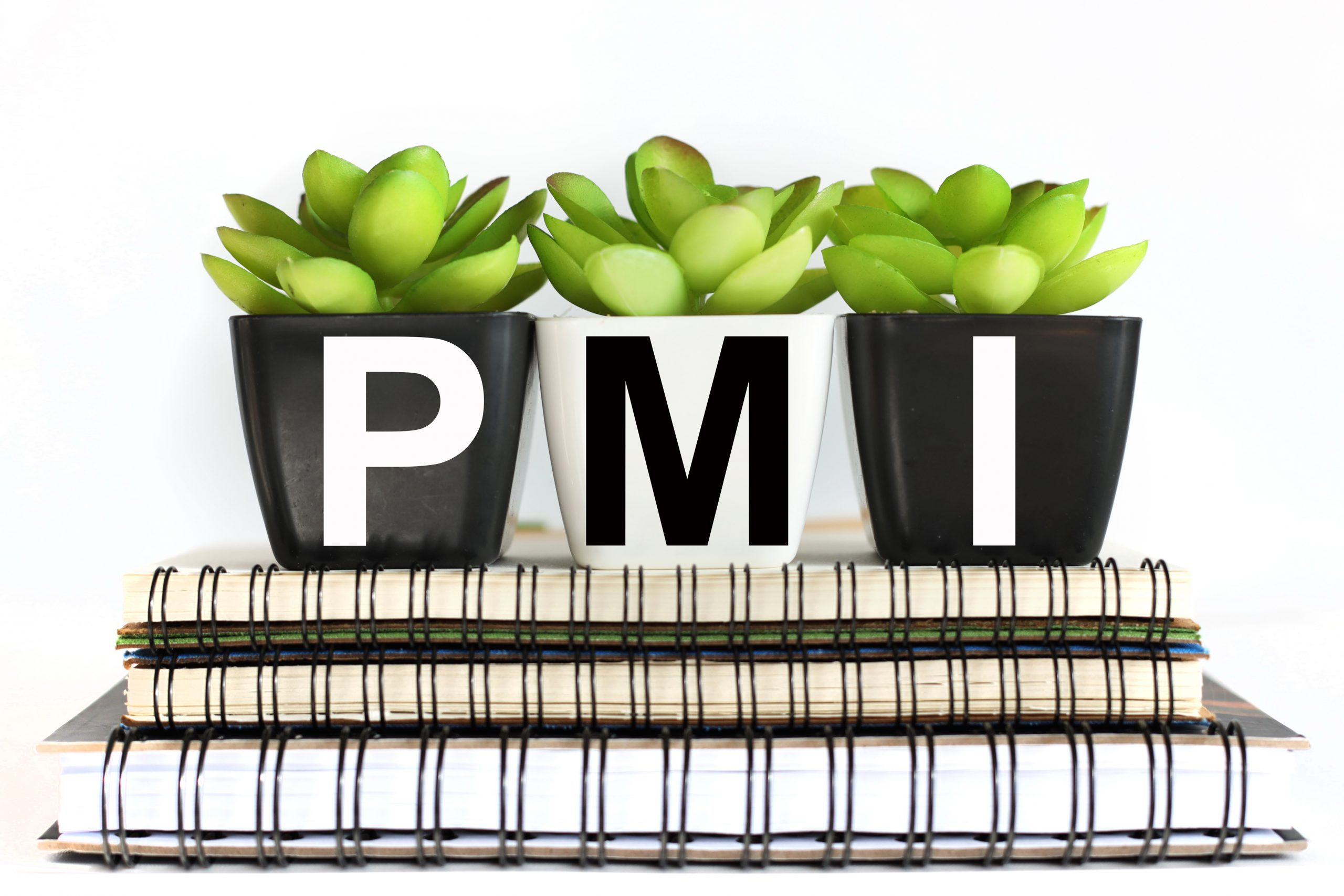 What does PMI stand for in finance?